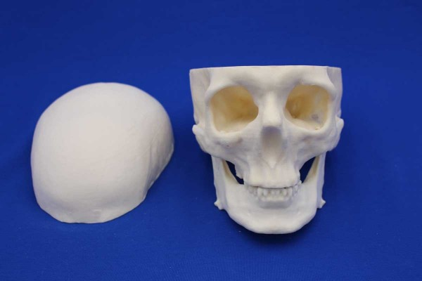 OPEN SKULL SOLID FOAM