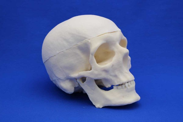 FULL SKULL SOLID FOAM