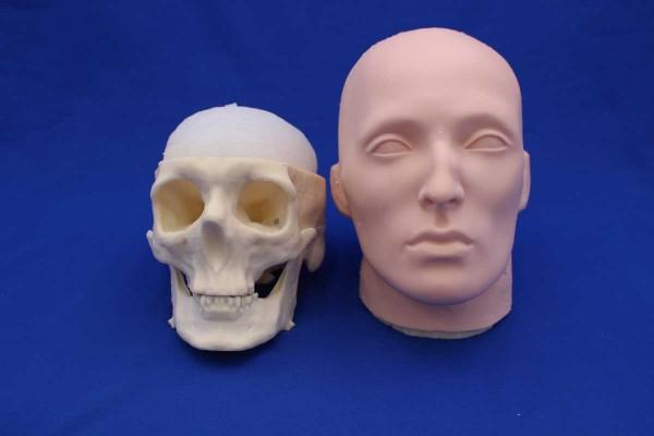 Crâne Solid Foam et Visage