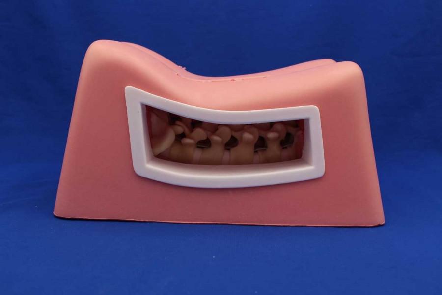 Spine surgery simulator MIS