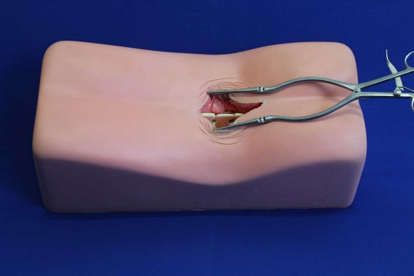 Spine Surgery Simulator sans Pathologie
