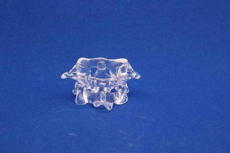 Clearbone Cervical C1/C2