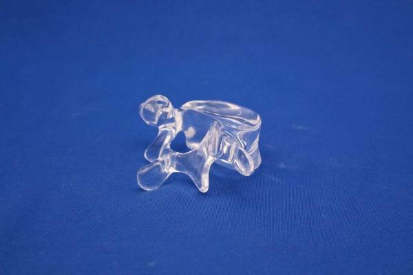 Clearbone Lumbar L5