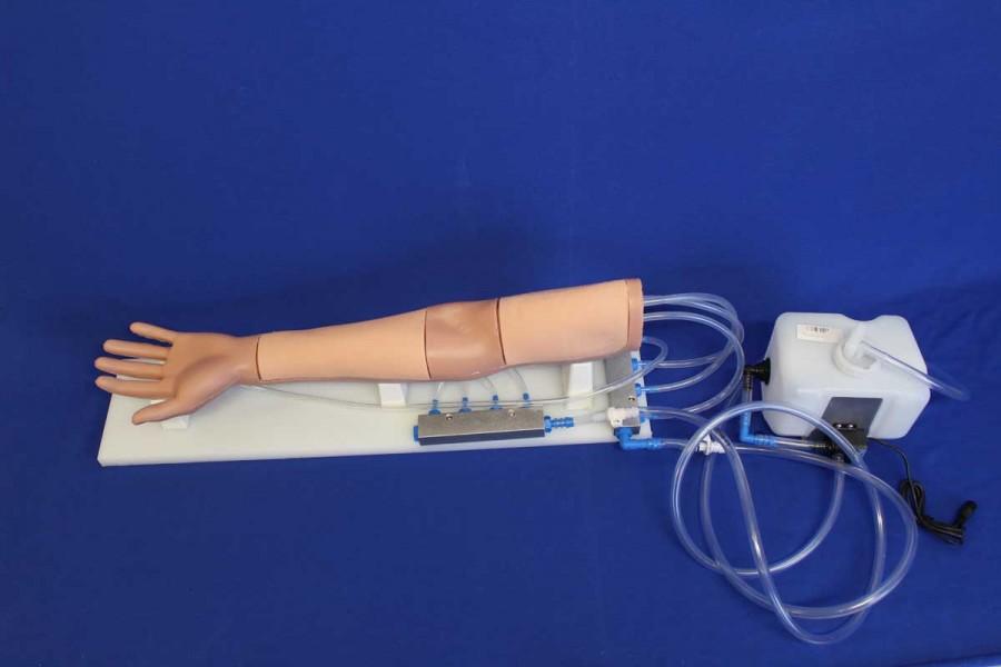 CATHETRAINER  bras échogène pour ponction veine profonde